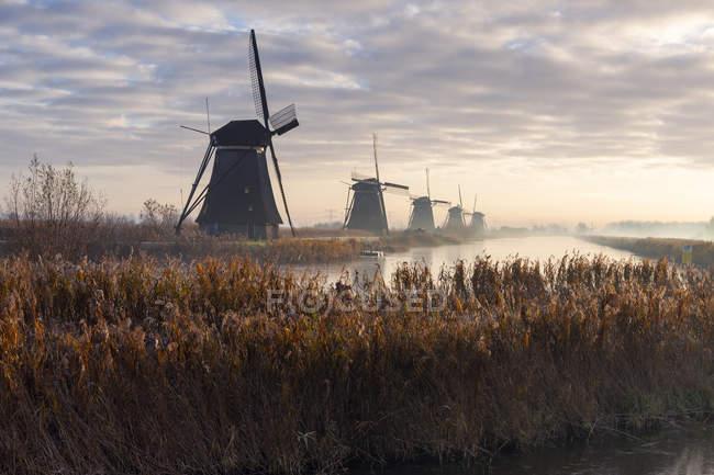 Países Bajos, Holanda, Rotterdam, Kinderdijk - foto de stock