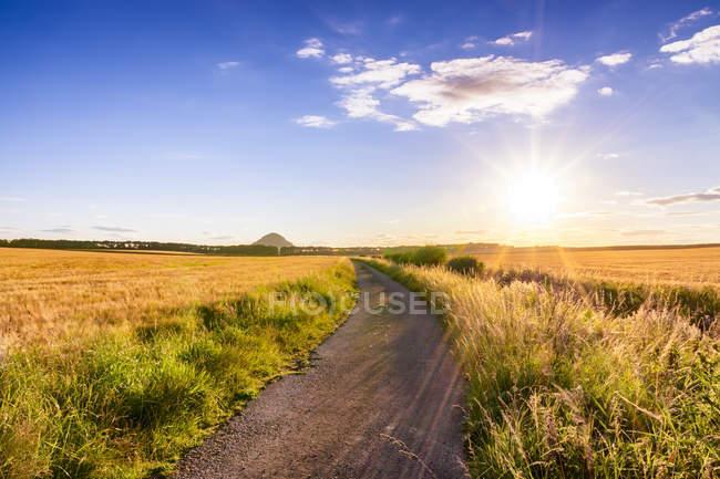 Royaume-Uni, Écosse, East Lothian, piste de terre entre les champs d'orge au coucher du soleil — Photo de stock