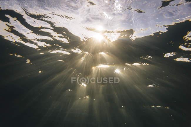 Maledives, Océan, sous l'eau, lumière du soleil — Photo de stock