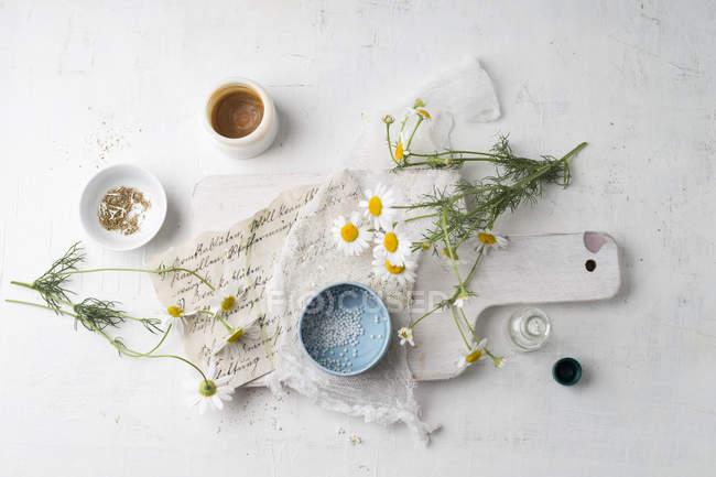 Fleurs de camomille, globules, thé et salve faits de camomille — Photo de stock