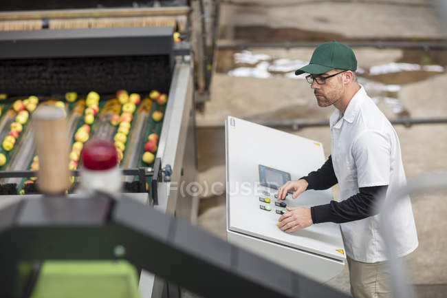 Рабочий, управляющий яблочной машиной — стоковое фото