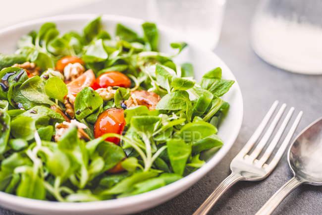 Салат з баранини з помідорами та волоськими горіхами — стокове фото