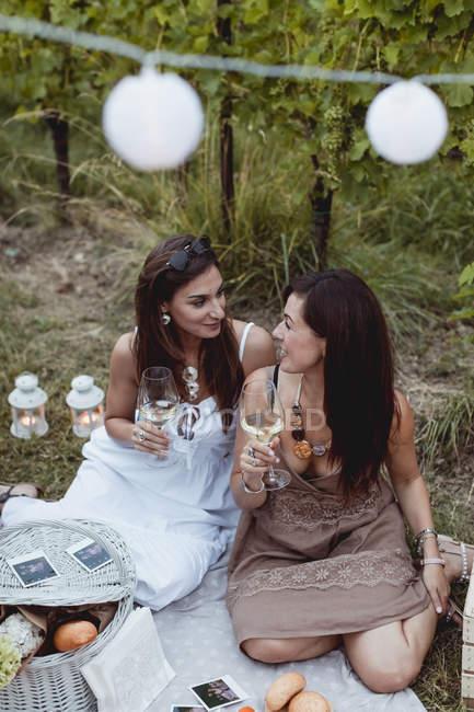 Друзі на літньому пікніку в винограднику п