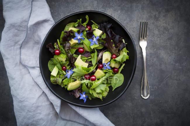 Шашлык из смешанного салата с авокадо, красной смородиной и борщом — стоковое фото