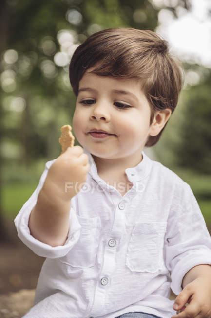 Портрет малюка, який дивиться на печиво в парку. — стокове фото