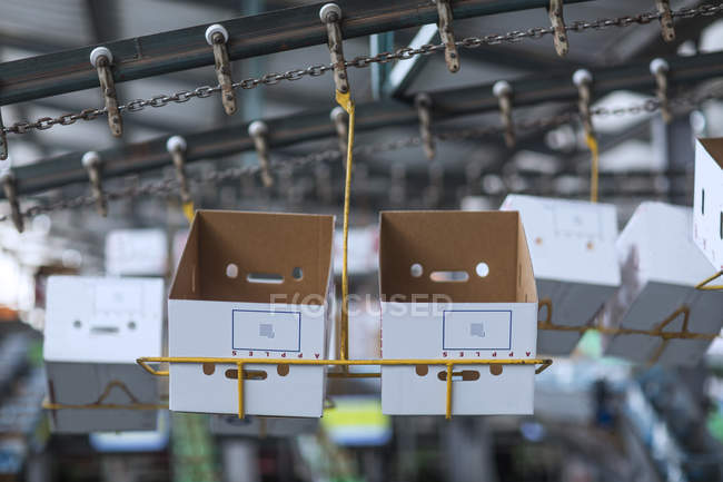 Close up of Cardboard boxes in a factory — Stock Photo