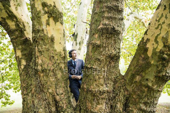 Бизнесмен в наушниках стоит у большого дерева — стоковое фото