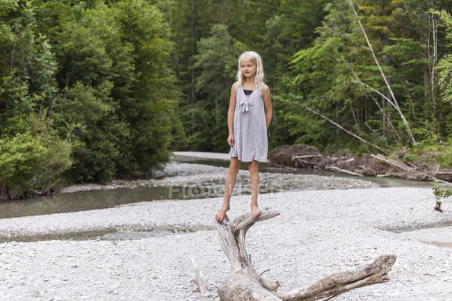 Mädchen steht auf totem Holz am Flussufer — Stockfoto