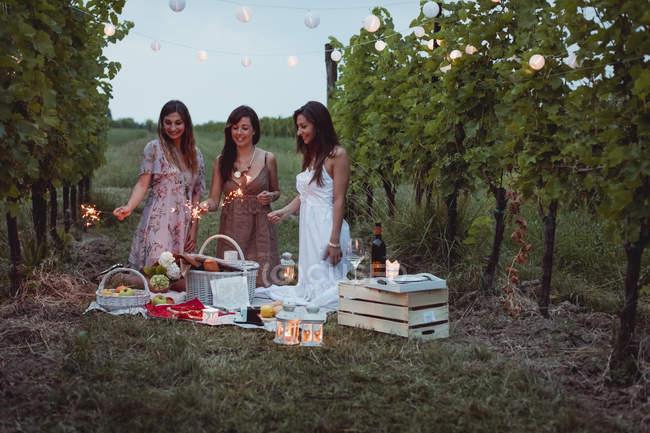 Друзья устраивают пикник на винограднике, жгут искры — стоковое фото