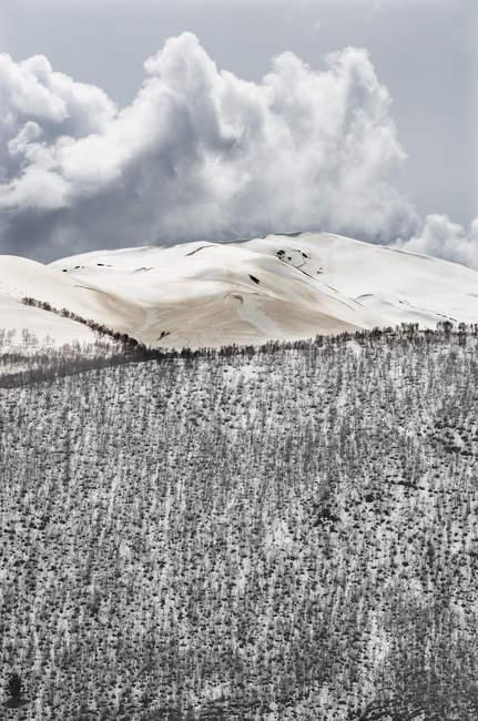 Грузія, Угулі, великий Кавказ, вкриті снігом — стокове фото