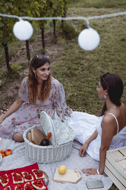 Friends having a summer picnic in vineyard — Stock Photo