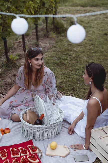 Amis pique-nique d'été dans le vignoble — Photo de stock