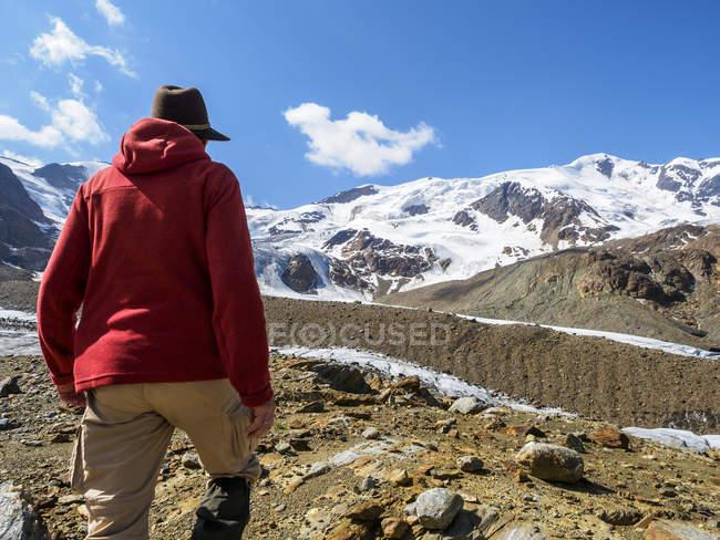Italia, Lombardia, cresta montuosa Cevedale Vioz, escursionista al ghiacciaio Forni — Foto stock
