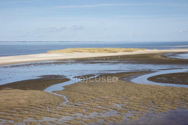 Germany,Schleswig-Holstein, North Frisia, Sylt, North Sea, List, Schleswig-Holstein Wadden Sea National Park, ornithological reserve Uthoern — Stock Photo