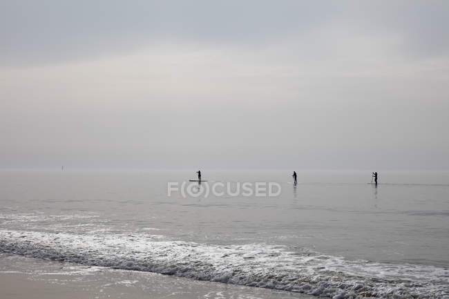 Germany, Schleswig-Holstein, Sylt, Stand up paddle surfing — стоковое фото