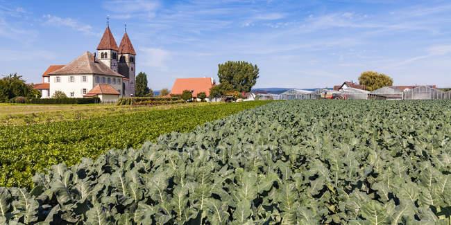 Germany, Reichenau Island, Niederzell, view to St Peter and Paul — Stock Photo