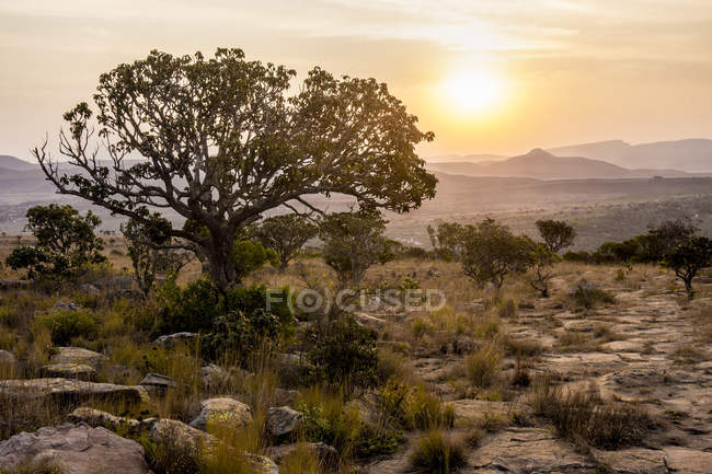 Africa, South Africa, Mpumalanga, Panorama Route, Blyde River Canyon Nature Reserve at sunset — Fotografia de Stock