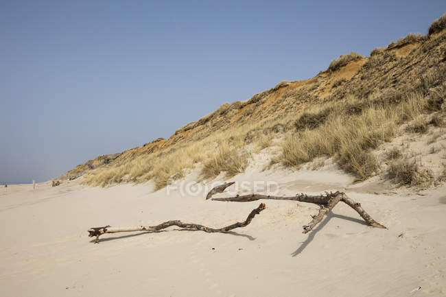 Germany, Schleswig-Holstein, North Frisian Islands, Sylt, beach at Rotes Kliff — Stock Photo