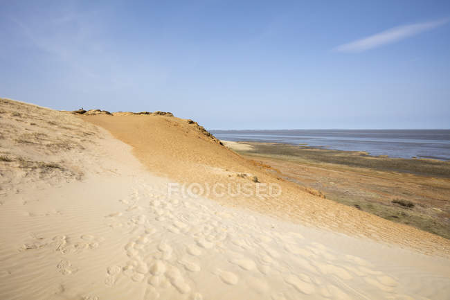 Germany, Schleswig-Holstein, North Frisian Islands, Sylt, Morsum, Morsum Cliff — Stockfoto