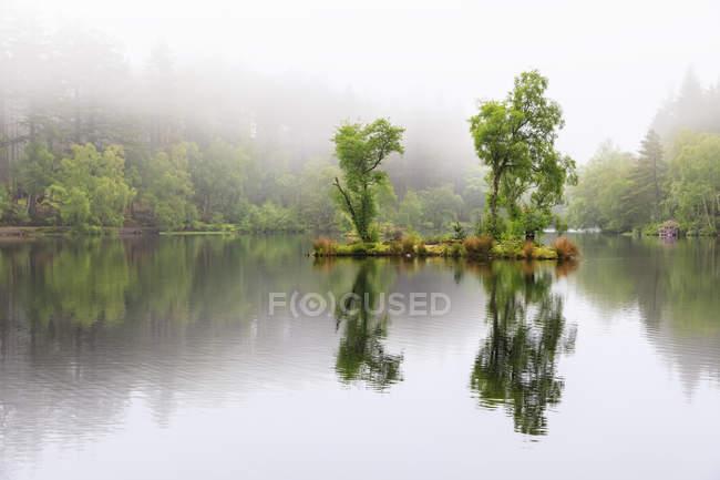 Gran Bretaña, Escocia, Highlands escocesas, Glencoe, Glencoe Lochan, niebla matutina - foto de stock