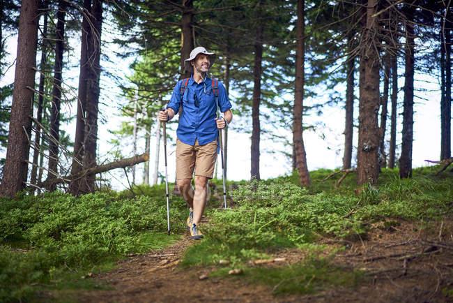 Homem sorridente caminhando na floresta — Fotografia de Stock