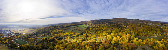 Alemania, Hesse, Oestrich-Winkel, Rheingau, Vista aérea en otoño - foto de stock