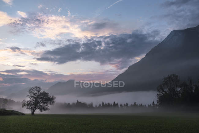 Austria, Ausseer Land, Landscape in morning mist — Stock Photo