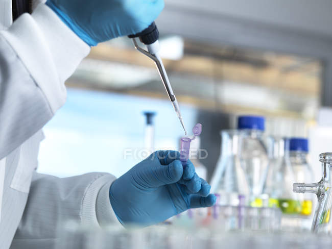 Cientista que introduz em pipting uma amostra do ADN em um tubo do eppendorf para o teste genético em um laboratório — Fotografia de Stock