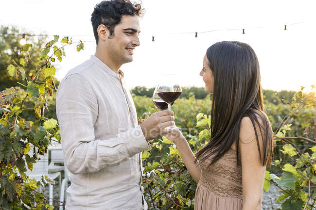 Italy, Tuscany, Siena, smiling young couple clinking red wine glasses in a vineyard — Stock Photo