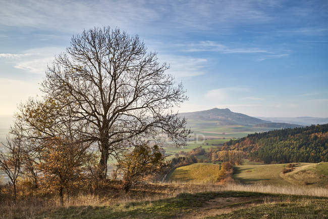 Germany, Baden-Wuerttemberg, Constance distrikt, Hegau, View to Hohenstoffeln — Stock Photo