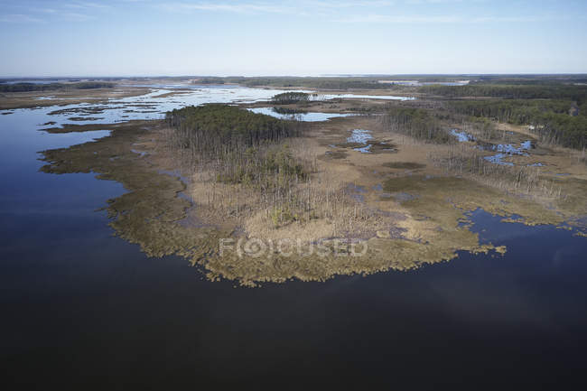 USA, Maryland, Cambridge, High tide flooding from rising sea levels at Blackwater National Wildlife Refuge — Stock Photo