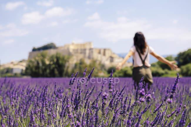 Франция, Grignan, вид сзади женщины, стоящей на лавандовом поле — стоковое фото