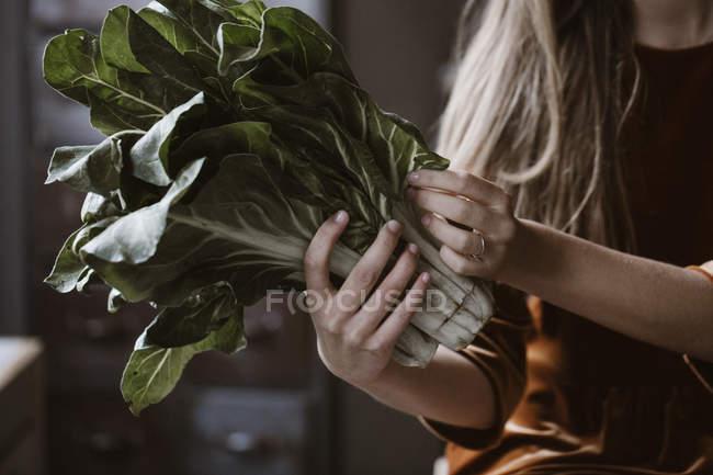 Обрезанный образ женщины, держащей в руках шард — стоковое фото