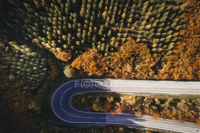 Austria, Lower Austria, Vienna Woods, Exelberg, aerial view on a sunny autumn day over a winding mountainroad — Stock Photo