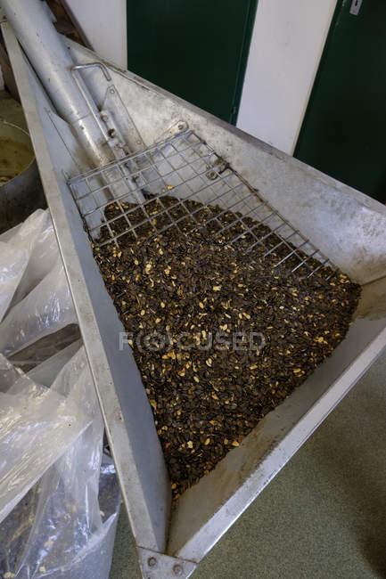 Recipiente com sementes de abóbora em um moinho de óleo — Fotografia de Stock