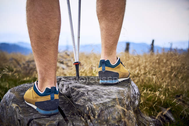 Close-up of man standing on tree stump during hiking trip — Stock Photo
