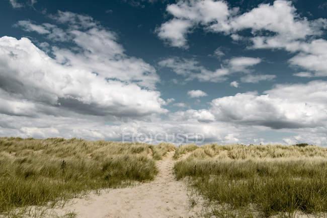 France, Haute Normandie, Avranches, près de Genets, dune, passerelle — Photo de stock