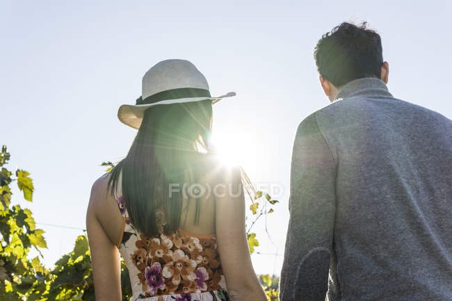 Italy, Tuscany, Siena, young couple in backlight in a vineyard — Stock Photo