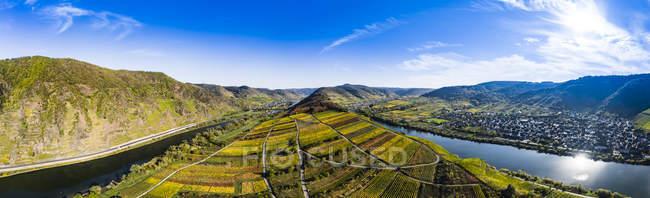 Germania, Renania Palatinato, Cochem-Zell, Brema, Veduta panoramica della Mosella Loop e del fiume Mosella — Foto stock