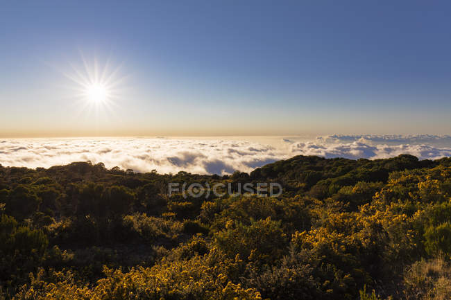 Reunion, Reunion National Park, Maido viewpoint, View from volcano Maido to sea of clouds and sunset — Stock Photo