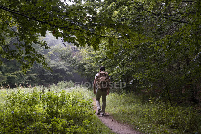 Bulgarie, Balkan Mountains, randonneur avec sac à dos sur sentier de randonnée, vue arrière — Photo de stock