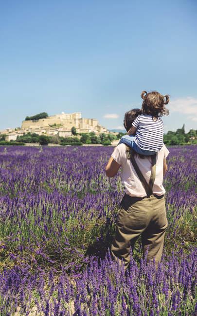 Франция, Гриньян, вид сзади на мать, стоящую на лавандовом поле с маленькой дочкой на плечах — стоковое фото