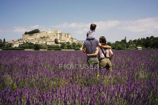 Франция, Grignan, вид сзади семьи, стоящей в лавандовом поле, с видом на деревню — стоковое фото