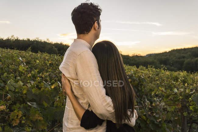 Italien, Toskana, Siena, junges Paar umarmt sich bei Sonnenuntergang in einem Weinberg — Stockfoto