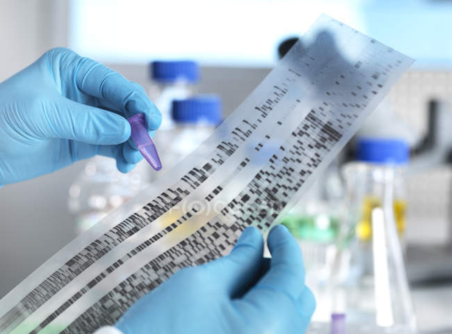 Scientifique tenant un échantillon d'ADN à côté des résultats d'un autoradiogramme en laboratoire — Photo de stock