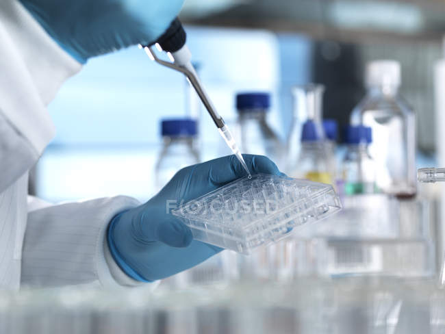 Scientist pipetting a DNA sample into a multi well plate ready for genetic testing in a laboratory — Stock Photo