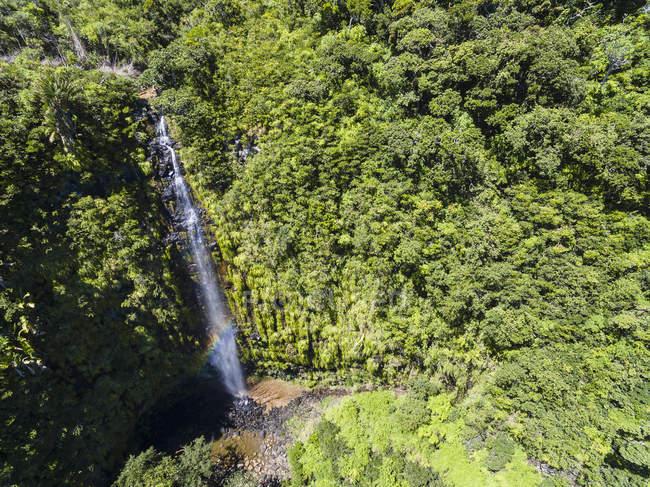 Mauricio, Parque Nacional de las Gargantas del Río Negro, Vista aérea de la cascada Mare Aux Joncs - foto de stock