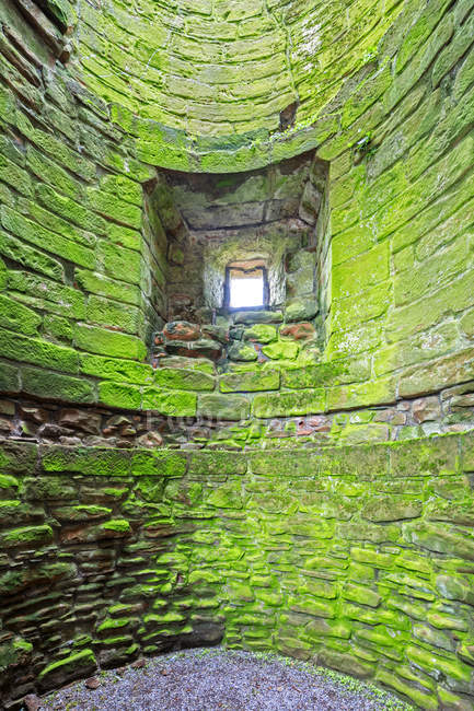 Grã-Bretanha, Escócia, Dumfries and Galloway, Castelo de Caerlaverock, parede verde cultivada com musgo — Fotografia de Stock