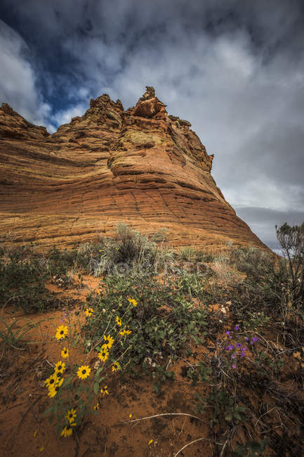America, Arizona, Kanab, Coyote Buttes — Stock Photo