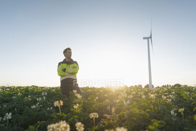 Инженер, стоящий в поле у ветровой турбины — стоковое фото